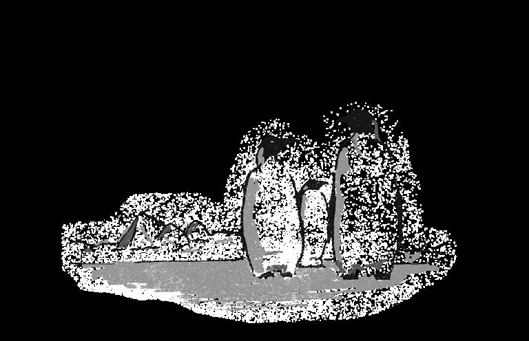 three penguins in Antartica